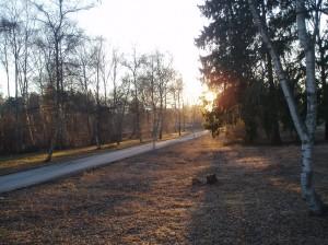 Solnedgång i Beckisparken