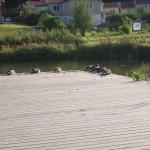 september-2009-005