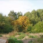 september-2009-007