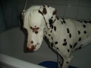 Crille lider när han badas....
